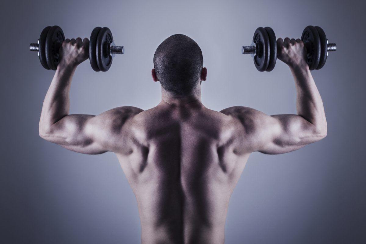 عضله سازی میکنید چه سبک وزنه بزنید چه سنگین!