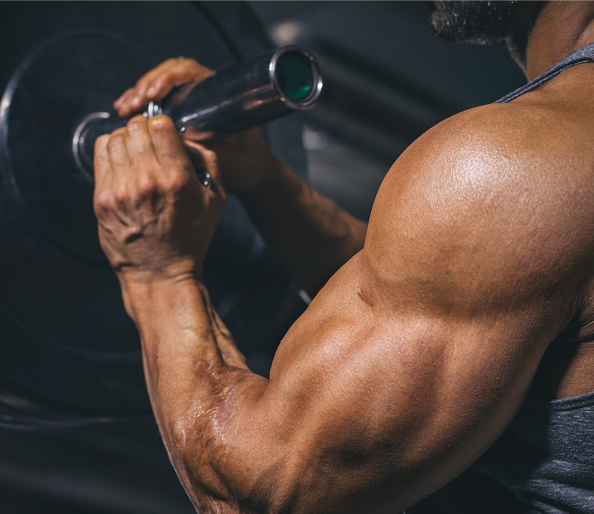مهم ترین و اساسی ترین نکات و حرکات برای تمرین عضلات پشتی